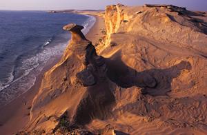 TPOTY Oman